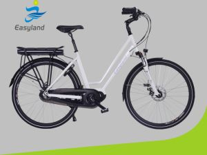 Brushless Motor 700c Newest Electric Bicycle with Certificate pictures & photos