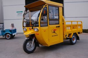 Electric Tricycle with Cab pictures & photos