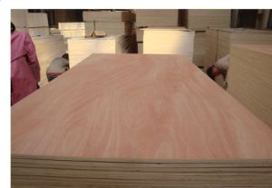 Best Price Bintangor Plywood Wholesale with Sanded Two Sides and Two Times Processing pictures & photos