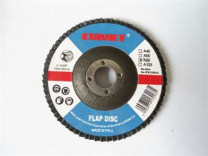 Flap Disc -100X80# pictures & photos