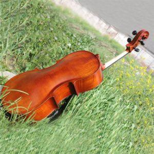 Student Cello (YSC006)