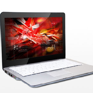"13"" Atom D525 Dual Core Laptop/Notebook, Metal Alloy Housing pictures & photos"