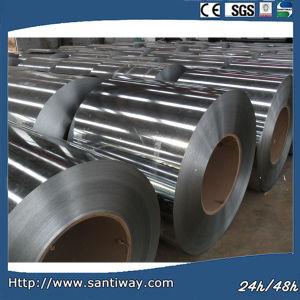 Prime Steel Coil, Steel Coils PPGI pictures & photos