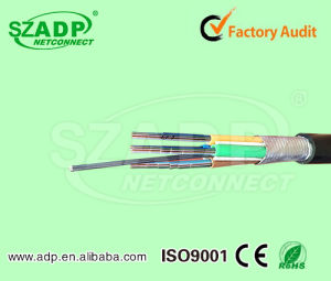 Outdoor Ribbon Fiber Optic Cable 144 288 Core Gydta pictures & photos