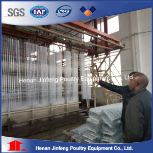 Automatic Chicken Cage Henhouse Poultry Equipment pictures & photos