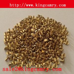 Solid Copper Rivets, Copper Rivets, Brass Rivets, Brass Copper Rivet pictures & photos