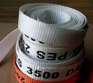 Dnv. Gl Certified Polyester Packing Strapping pictures & photos