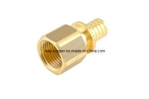 Brass Female Adaptor/ Reduce Nipple (PEX-009) pictures & photos
