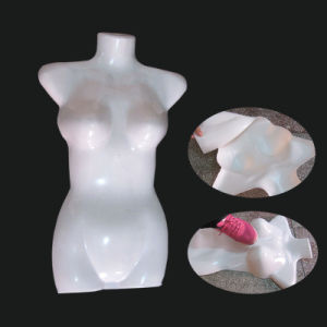 Human Body Model Blow Mold pictures & photos