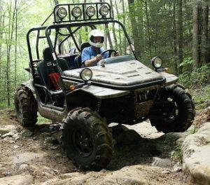 1100CC 4X4 Dune Buggy Go Kart pictures & photos