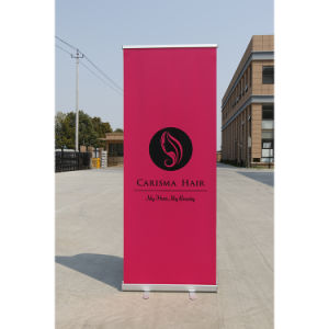 Best Price Economic Roll up Banner Stand Display pictures & photos