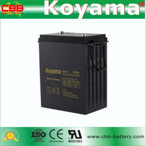 DC330-6 6V330ah Deep-Cycle AGM Battery for Neighborhood Electric Vehicle (NEV) pictures & photos