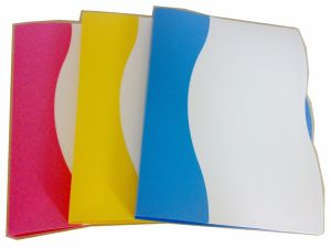 Office Supply Stationery Double Color Display Book pictures & photos