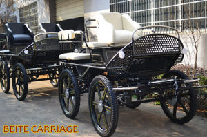 Marathon Stainless Steel Horse Carriage for Pleasure (BTH-02S)