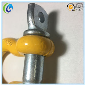U. S Type Screw Pin Anchor Shackle pictures & photos