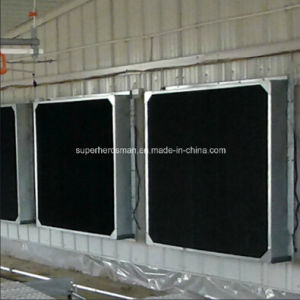 Shading Cover for Layer and Breeder Chicken House pictures & photos