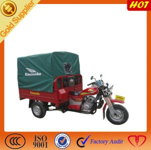 Cargo & Passenger 3 Wheel Electric Trike Tricycle Motorcycle pictures & photos