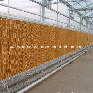 Wet Cooling Pad for Poultry Farm pictures & photos