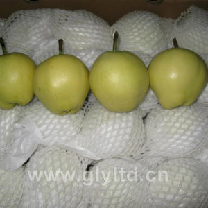 Exported Standard Quality Fresh Early Su Pear pictures & photos