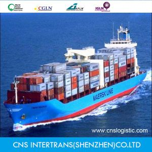 Unbeliveble Ocean Freight From China to Mexico
