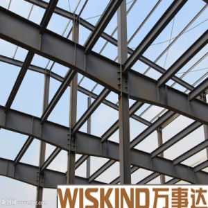 Wiskind Modern Large Span Industrial Steel Structure Building pictures & photos