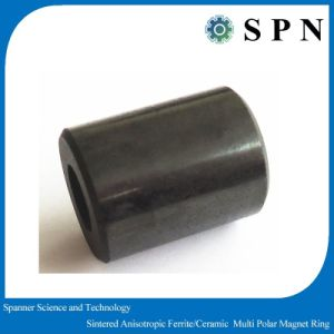 Permanent Ferrite Magnet Multipole Anisotropic Rings pictures & photos