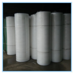Plastic Poultry Netting /Agticalture Mesh pictures & photos