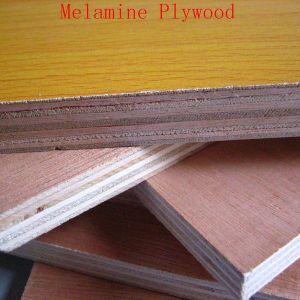 Plywood Okoume Plywood