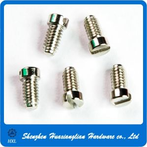 Custom Made Precision Micro Small Electronic Screw for Watch (M0.7-M2.0) pictures & photos