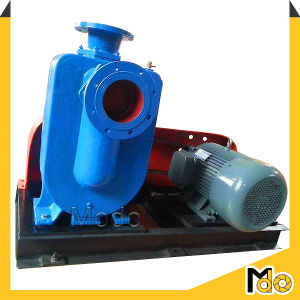 Centrifugal Horizontal Vacuum Priming Sewage Pump pictures & photos