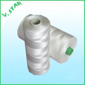 Nylon 6 Fishnet Twine/Thread 210d/2-150ply pictures & photos