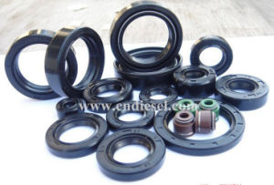 Tc High Quality NBR Oil Seal pictures & photos