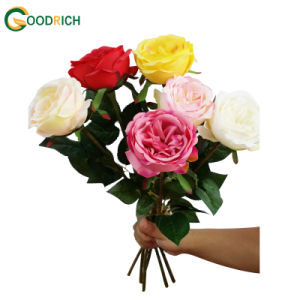 High Quality Single Stem Artificial Flower pictures & photos