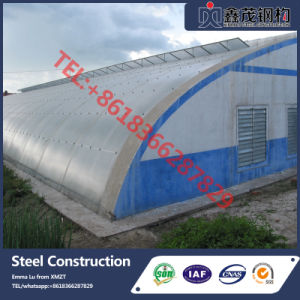 Netherlands Technology High Quality Single-Layer Film Greenhouse pictures & photos