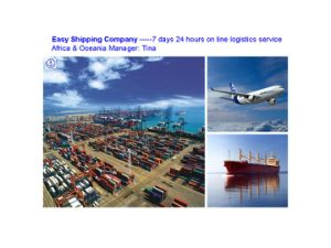 Lowest Sea Consolidate Freight From China to South America Shipping pictures & photos