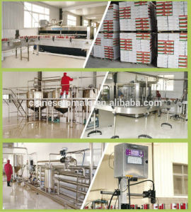 Processional Canned Tomato Paste Factory with High Quality pictures & photos