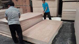 Good Plywood with Reasonable Price pictures & photos