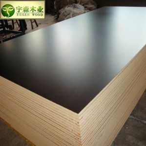 Combi Core 18mm Brown Film Faced Plywood for Construction pictures & photos