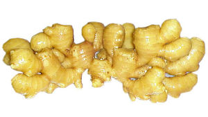 Golden Supplier New Crop Fresh Ginger (200g and up) pictures & photos