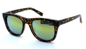 Promotion Fashion Sunglasses Plastic Frame (C0061) pictures & photos
