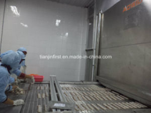 Stainless Steel Belt Quick Freezing IQF Tunnel Freezer pictures & photos