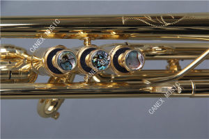 Professional Trumpet / High Grade Trumpet/ Bb Trumpet (TR-800AL) pictures & photos