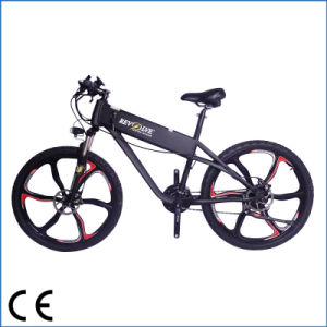Magnesium Alloy Wheels Mountain Electric Bicycle (OKM-567)