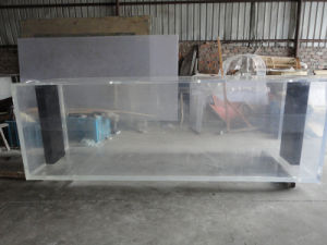 Acrylic Golden Dragon Fish Tank Mr350 pictures & photos