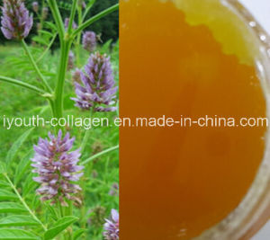 China Top-Level 100%Natural Organic Licorice Honey, Ripe Honey, No ...