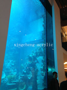 Aquarium Wholesale/Aquariums in China Goods/Acrylic Panels for Aquariums pictures & photos