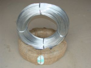 Steel Iron Wire pictures & photos