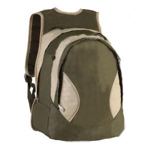 Laptop Backpacks (DW-6278)
