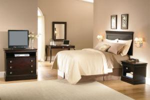 Hot Sales Fixture Classic Hotel Furniture (HF1804)
