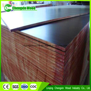 Good Quality Film Faced Plywood/Shuttering Plywood at Competitive Price pictures & photos